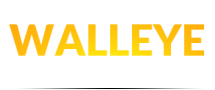 Detroit River Walleye Classic